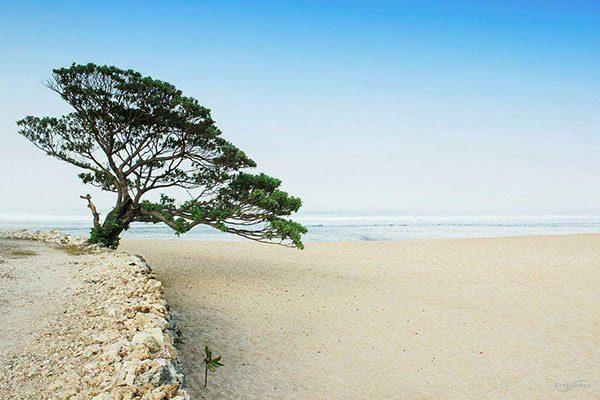 Rute Pantai Pok Tunggal