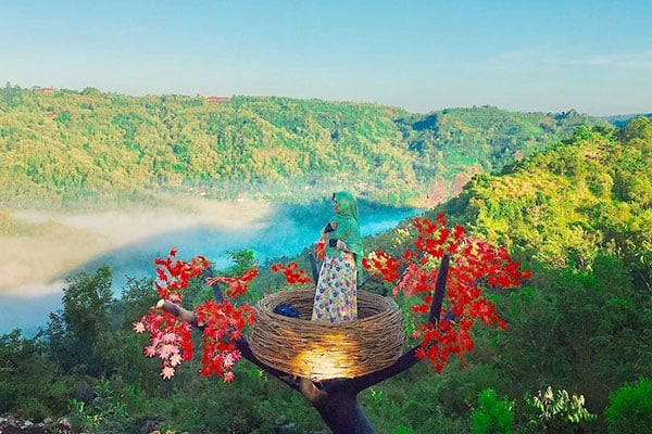 harga-tiket-masuk-bukit-mojo-gumelem Bukit Mojo Gumelem Kanigoro, Mangunan, Dlingo, Bantul