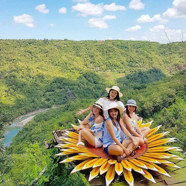 spot bunga matahari bukit mojo gumelem