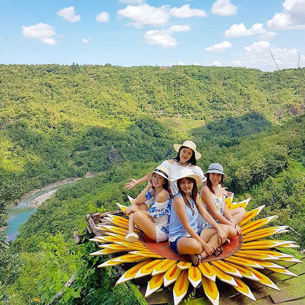 spot-bunga-matahari-bukit-mojo-gumelem Bukit Mojo Gumelem Kanigoro, Mangunan, Dlingo, Bantul