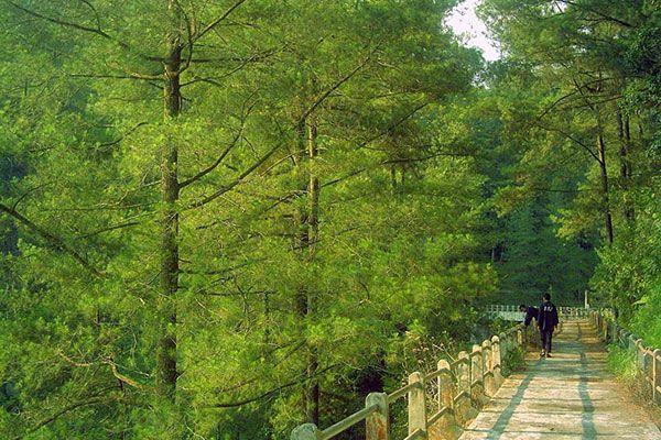 lokasi-kali-kuning Keindahan Wisata Alam di Bukit Kali Kuning Yogyakarta